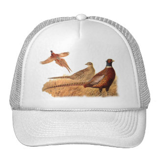 Elusive Pheasant Bird Hunting Mesh Hat