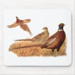 Elusive Pheasant Bird Hunting Mousepad