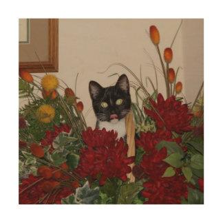Elvira the Cat, Wood Wall Art Print.