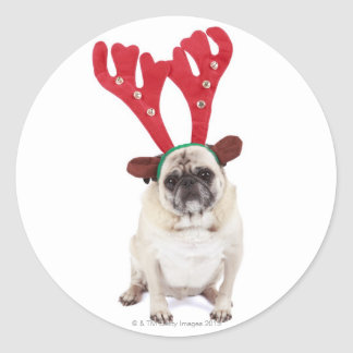 Embarrassed looking Pug wearing Reindeer Antlers Round Sticker