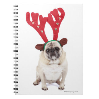 Embarrassed looking Pug wearing Reindeer Antlers Spiral Notebook