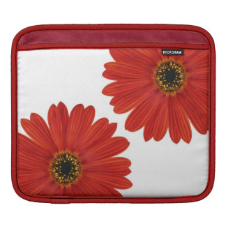 Embrace Happiness Daisies iPad Sleeves
