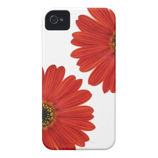 Embrace Happiness Daisies iPhone 4 Case-Mate Case