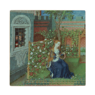 Emelye in her garden. The imprisoned knights Palam Wood Coaster