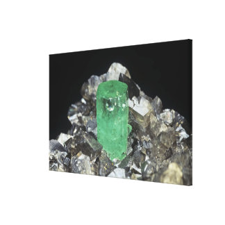 Emerald crystal in Calcite, Colombia, South Americ Canvas Print
