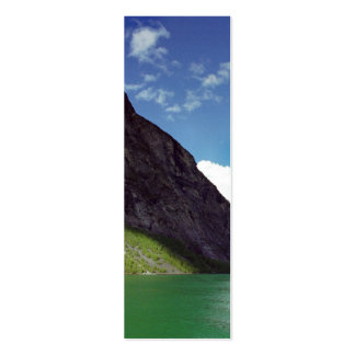 Emerald Fjord Dream Bookmark Pack Of Skinny Business Cards