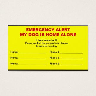 Emergency Alert Dog Home Alone Card
