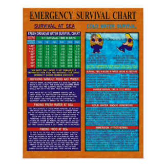 Emergency Survival Chart Poster