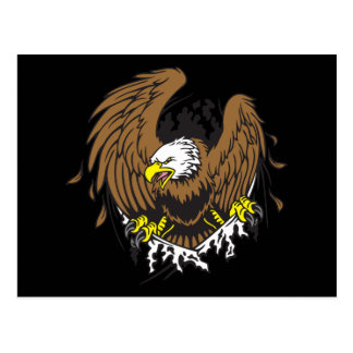 Emerging Eagle Postcard