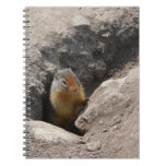 Emerging Rodent Photo Spiral Notebook