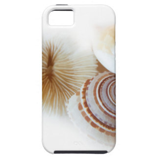 Emerging Shells Case For The iPhone 5