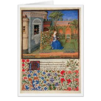 Emilia in the rosegarden cards
