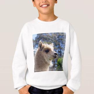 Emily Alpaca Sweatshirt