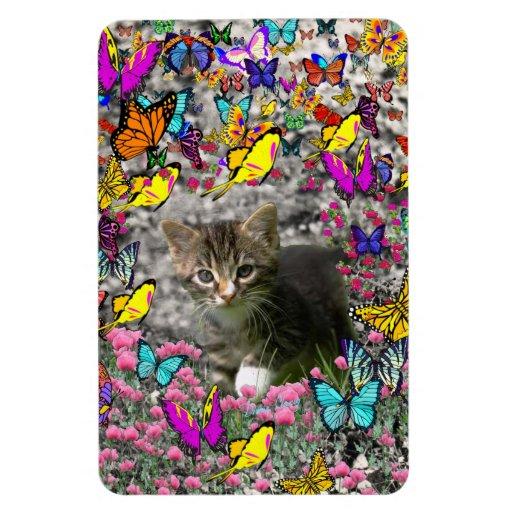 Emma in Butterflies I - Gray Tabby Kitten Vinyl Magnets