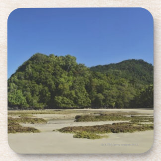 Emmagen Beach, Daintree National Park (UNESCO 2 Coaster
