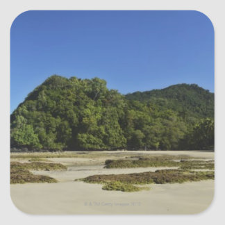 Emmagen Beach, Daintree National Park (UNESCO 2 Square Sticker