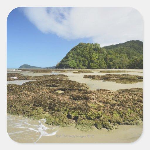 Emmagen Beach, Daintree National Park (UNESCO 3 Square Sticker