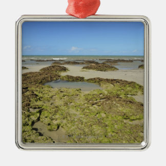 Emmagen Beach, Daintree National Park (UNESCO 4 Christmas Ornament