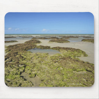 Emmagen Beach, Daintree National Park (UNESCO 4 Mouse Pad