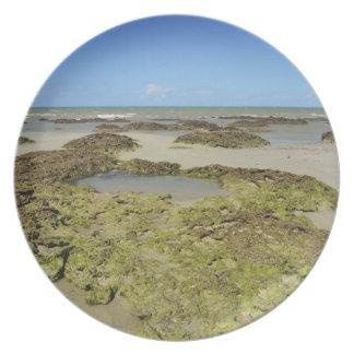 Emmagen Beach, Daintree National Park (UNESCO 4 Plate