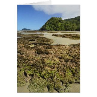 Emmagen Beach, Daintree National Park (UNESCO Card