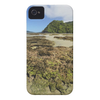 Emmagen Beach, Daintree National Park (UNESCO Case-Mate iPhone 4 Cases