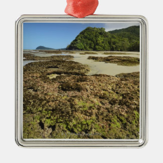 Emmagen Beach, Daintree National Park (UNESCO Christmas Ornament