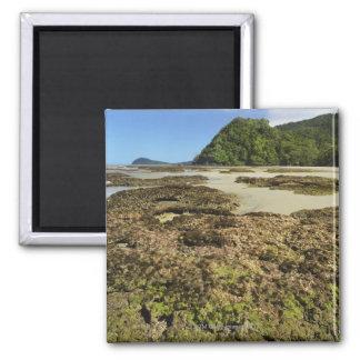 Emmagen Beach, Daintree National Park (UNESCO Magnet