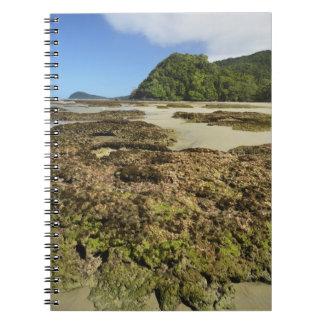 Emmagen Beach, Daintree National Park (UNESCO Spiral Notebook