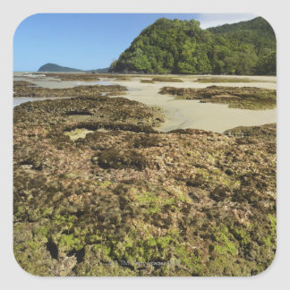 Emmagen Beach, Daintree National Park (UNESCO Square Sticker