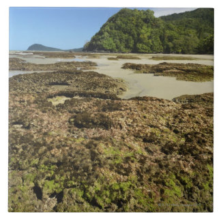 Emmagen Beach, Daintree National Park (UNESCO Tile