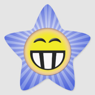 EMOTICON BIG TOOTHY SMILEY FACE STAR STICKERS