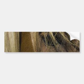 Emotional Horse Bumper Sticker