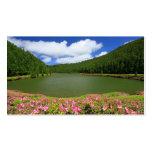 Empadadas Lakes - Azores
