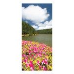 Empadadas Lakes - Azores Full Colour Rack Card
