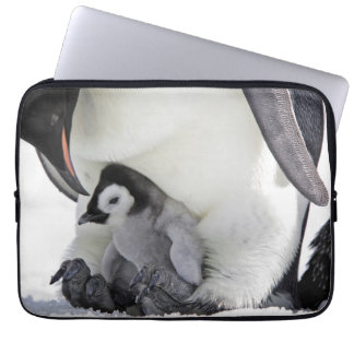 Emperor Penguin At Snow Hill Island Laptop Sleeve