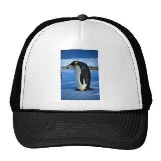 Emperor penguin by moonlight trucker hats