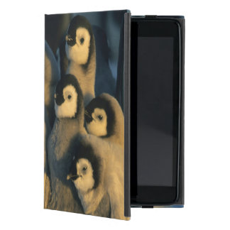 Emperor Penguin chicks in creche, Aptenodytes iPad Mini Cover