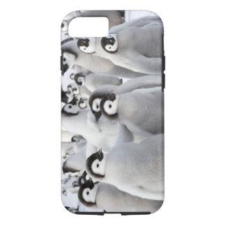 Emperor Penguin Chicks iPhone 7 case