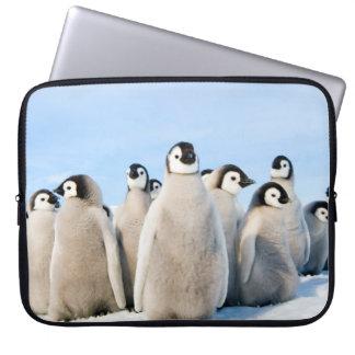 Emperor Penguin Chicks - laptop case