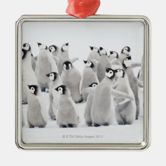 Emperor penguin christmas ornament