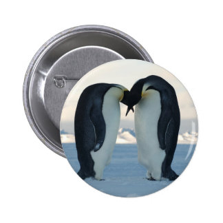 Emperor Penguin Courtship 6 Cm Round Badge