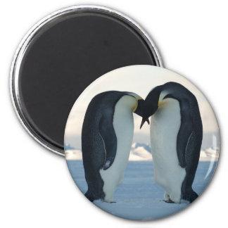 Emperor Penguin Courtship 6 Cm Round Magnet