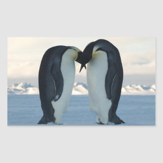Emperor Penguin Courtship Rectangular Sticker
