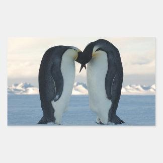 Emperor Penguin Courtship Rectangular Sticker