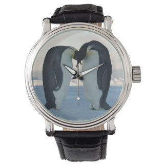 Emperor Penguin Courtship Wrist Watches