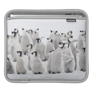 Emperor penguin iPad sleeve