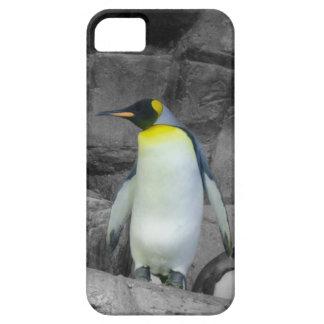 Emperor Penguin iPhone 5 Cover