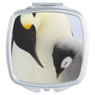 Emperor Penguin looking at chick Travel Mirrors