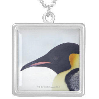 Emperor Penguin, Snow Hill Island Silver Plated Necklace